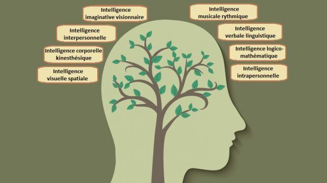 apprendre_8_intelligences_01
